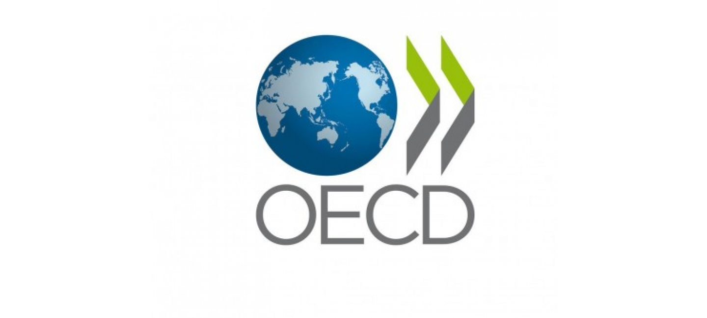 TURKMEN SIDE ATTENDED OECD REGIONAL MEETING